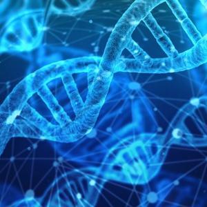 遺伝子コピーミスからBADLACKな癌