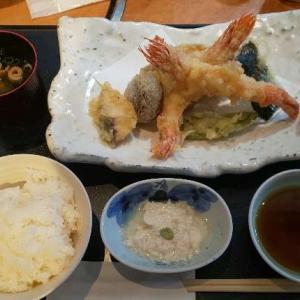 神戸・須磨の海鮮が美味しい「 魚魚 」ランチ 子連れ・多人数にもおすすめ