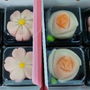 子連れで京都プチ旅行(後編) 生麩ランチ・和菓子体験・清水周辺