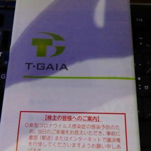 ティーガイアで有難い議決権行使特典!!500円分のQUOカード