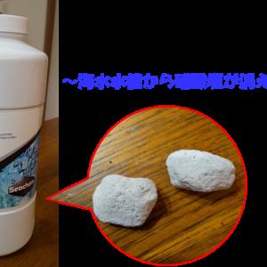 水替えレスで海水アクアリウムを楽しむ方法~海水水槽から硝酸塩が消えた日~