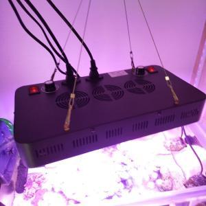 格安LEDライト ブラックボックスの使用感と注意点