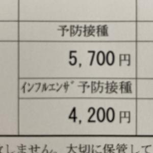 予防接種、高齢者はタダ。我が家は先月3万6千600円払いました(;_;)