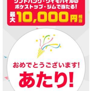 2歳娘のトイトレ経過(๑˃̵ᴗ˂̵) paypay運試し〜♡!