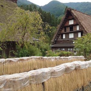 白川郷と絶品飛騨牛と石豆腐ステーキ