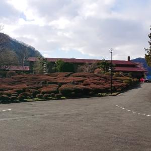 猿ヶ京温泉 誓湖荘の宿泊記 タムラ製作所の保養所です
