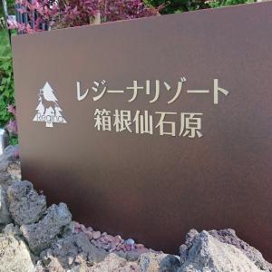 ペットと泊まれる宿 レジーナリゾート箱根仙石原 連泊の食事 宿泊記ブログ
