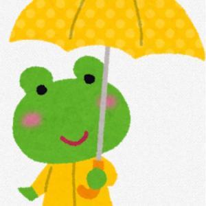 新しい傘のお話