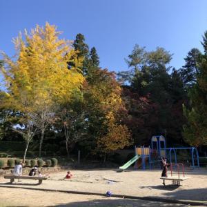 城山公園の紅葉も見頃です。