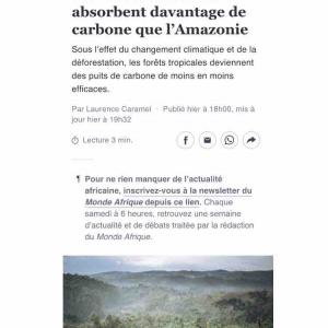 〜アフリカの森が世界を救う??〜