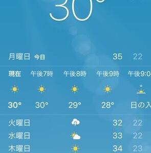 日本の湿度の恐ろしさとすごいメリット