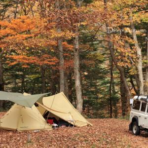 【秋キャンプの夜】車への避難はOKだけど、アイドリングはやめてね!