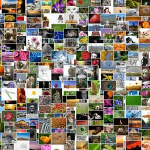 【美しいフリー画像】ブログWordPressのプラグイン「Pixabay Images」を使ってるよ!