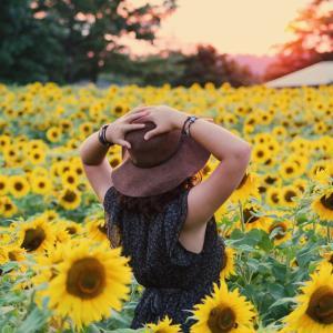 【何でもない日にお花を飾る】リビングが一気に夏になった!