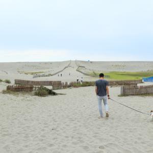 【中田島砂丘/静岡県浜松市】日本三大砂丘の中田島砂丘でわんこと一緒にまったり過ごす秋の浜辺