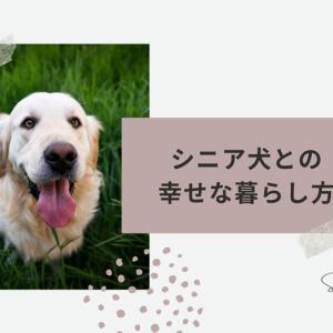 【開催報告】Zoomイベント「シニア犬との幸せな暮らし方」