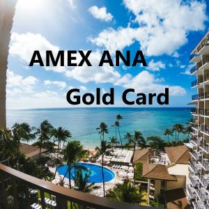 AMEX ANAカード海外旅行好きにオススメのクレジットカード〜使用歴4年の私がオススメする3つのポイント