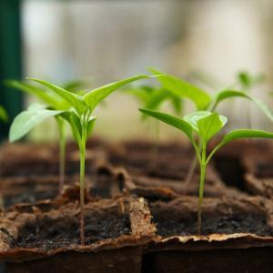 昨日の自分より成長するには、行動を数値化して把握する