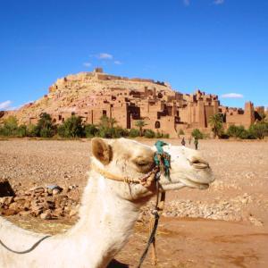 (46)モロッコ◆カスバ街道でラーメンを堪能