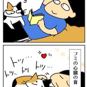 猫とジョイントライブ