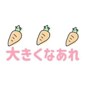 家庭菜園♡夏野菜収穫に向けて♡