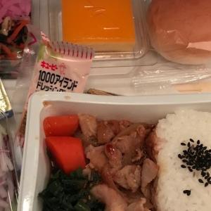 2018年12月のアメリカン航空機内食☆(American Airline flight meal)