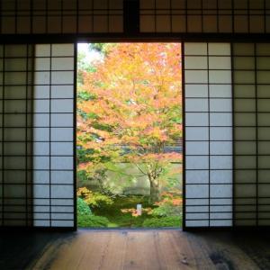 京都東山の東福寺・泉涌寺【紅葉】仏像や庭を楽しむおすすめコース