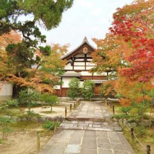 寺に山荘で紅葉を楽しむ京都嵐山の散策コース【穴場】食べ歩きはコロッケ!
