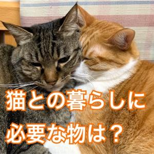 猫との暮らしに必要な物は?はじめに知っておきたい事のまとめ