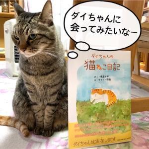 『ダイちゃんの猫ネコ日記』に癒やされて【絵本】実在する猫の暮らし