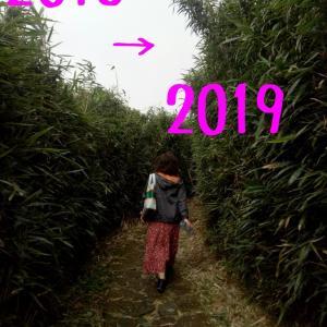 2018年を振り返って& 2019年の抱負