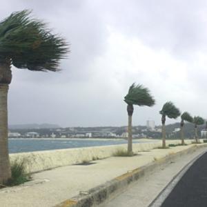 台風上陸予想 過去の教訓から学ぶ台風・強風・大雨の際の注意点