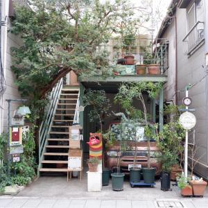 北品川「zakka+cafe La capi(ラ カピ)」