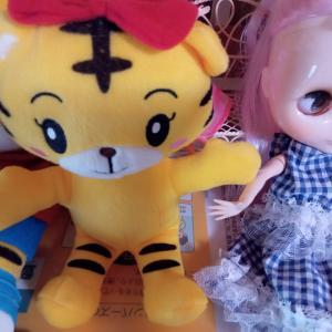 ブライス人形の怖い話と中古ドールや人間関係を浄める方法!