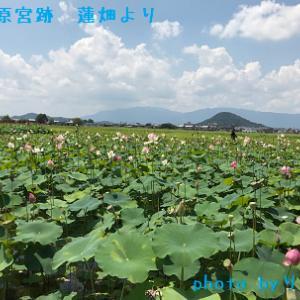 真夏の京都・奈良 一人旅 ③ー3