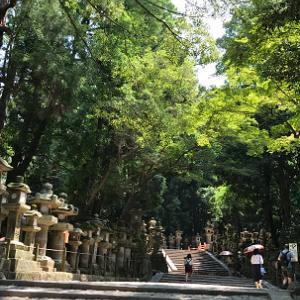 真夏の京都・奈良 一人旅 ④
