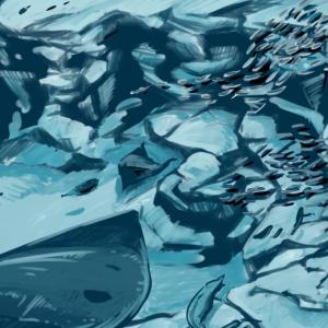 新江ノ島水族館:フウセンウオがかわいい