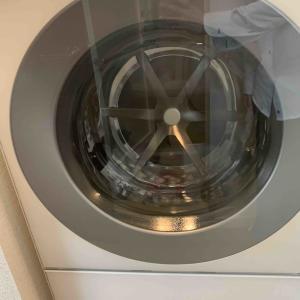 時間がない一人暮らしの社会人男性にこそ、乾燥機能付きドラム式洗濯機を買ってほしい(NA-VG730L)のレビュー