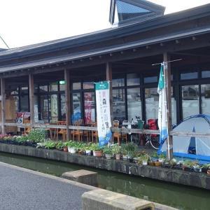 3-55日目 十和田湖でキャンプ