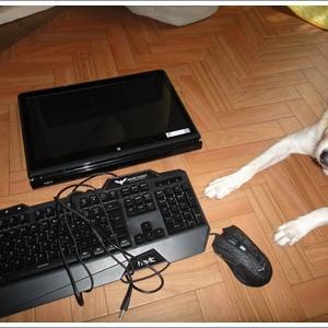 パソコン&ミラーレス一眼