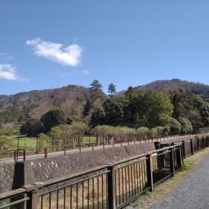 比叡山で野菜を栽培しよう