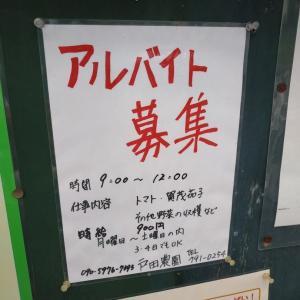 京都市北区 上賀茂 アルバイト