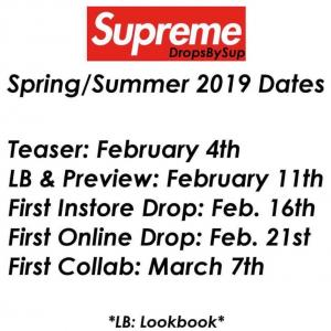 SUPREME spring/summer2019 (19ss) 立ち上げ オンライン日程公開