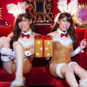 Merry Bunny Christmas!!!