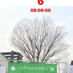 【あと6日】コロコロ変わる天気予報とウィメンズの走り方。