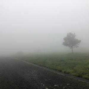 超絶霧と雨のふもとっぱらと ゆるキャン△聖地の身延町!