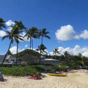 THE BUSに乗り、ハワイアンブルーが魅惑的な東海岸のカイルア・ラニカイビーチへ