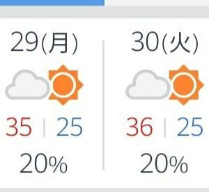 やっと梅雨明け!