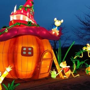 クリスマスは東京ドイツ村のイルミネーションとBBQ