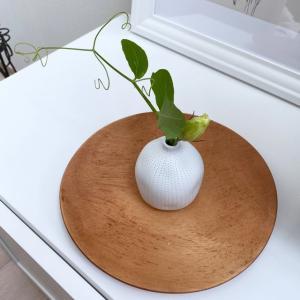 【親世帯】追加購入した大物で、キッチンの完成度がさらにアップ!